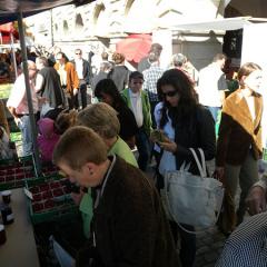 At the Lucern Market Place, Lucerne