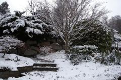 La belleza del invierno