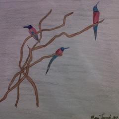 Ice Birds, Crayons 2012